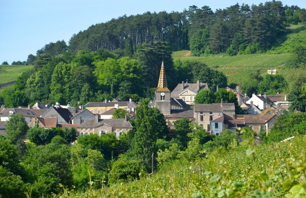 Burgundy Discovery wine tours